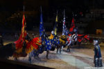 Medieval Times Knights