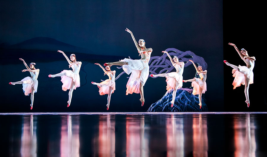 Soaring Wings Ballet