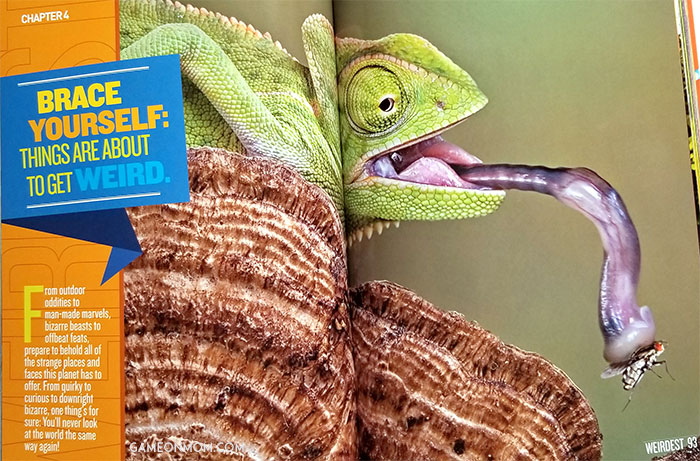 National Geographic Kids Books Birthday Prize Pack Giveaway